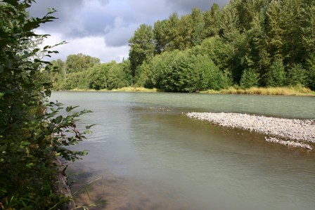 Nisqually River Council Working To Protect And Promote